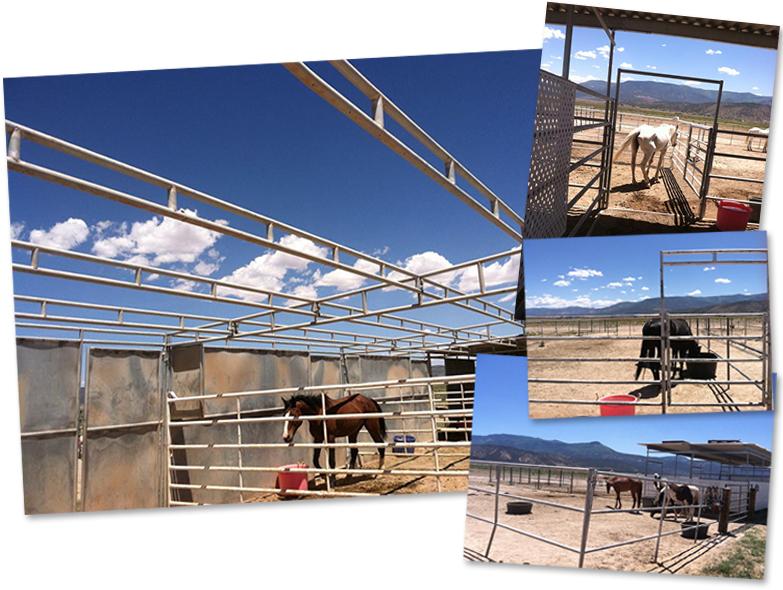 Barn Fund for Dust Devil Ranch Sanctuary for Horses